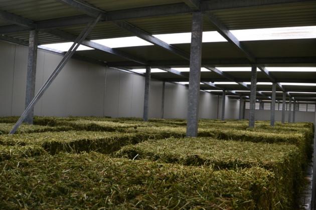 AgriCompact Technologies GmbH, Heutrocknungsanlage, Heutrocknung, Rundballen, Quaderballen