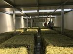 Heu-toi-toi! Erfolg ist unsere Visitekarte - AgriCompact Technologies GmbH, Deutschland, www.agri7.de